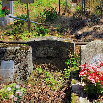 Старое кладбище Таганрога, Участок доктора Шимановского