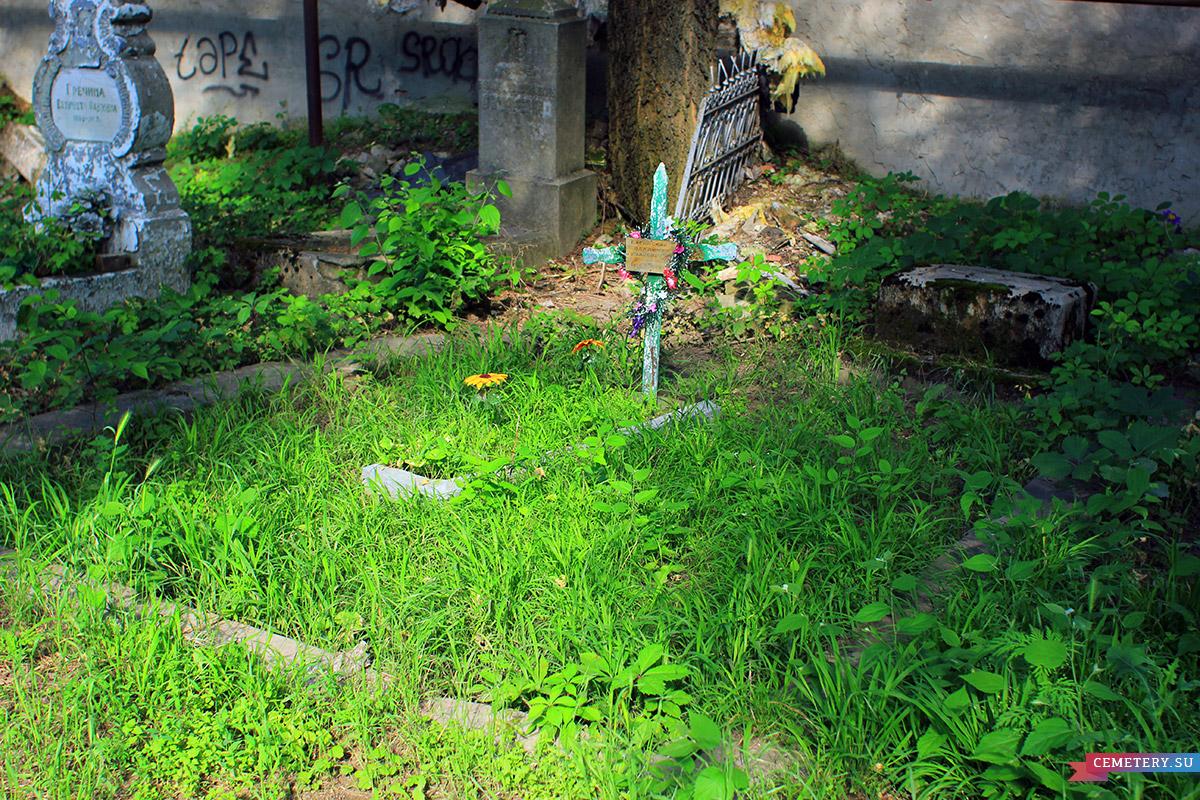 Старое кладбище Таганрога. Участок Багинского