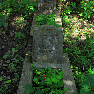 Старое кладбище Таганрога. Плужникова Л. И.