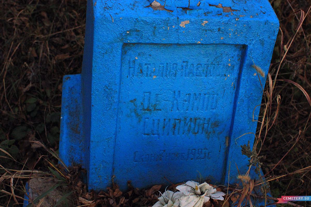 Старое кладбище Таганрога. Н. П. Де-Кампо Сципион