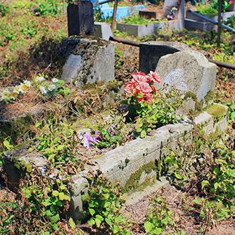 Старое кладбище Таганрога. Рядом с доктором Шимановским