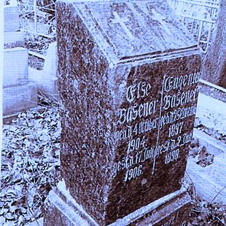 Старое кладбище Таганрога. Младенцы Базенер