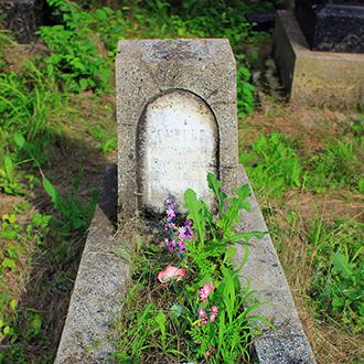 Старое кладбище Таганрога. Рыбный магнат П. М. Рочегов