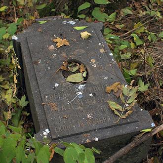 Старое кладбище Таганрога. Малчевская Е. В.