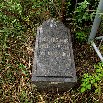 Старое кладбище Таганрога. Священник лютеранской церкви Н. Штраус