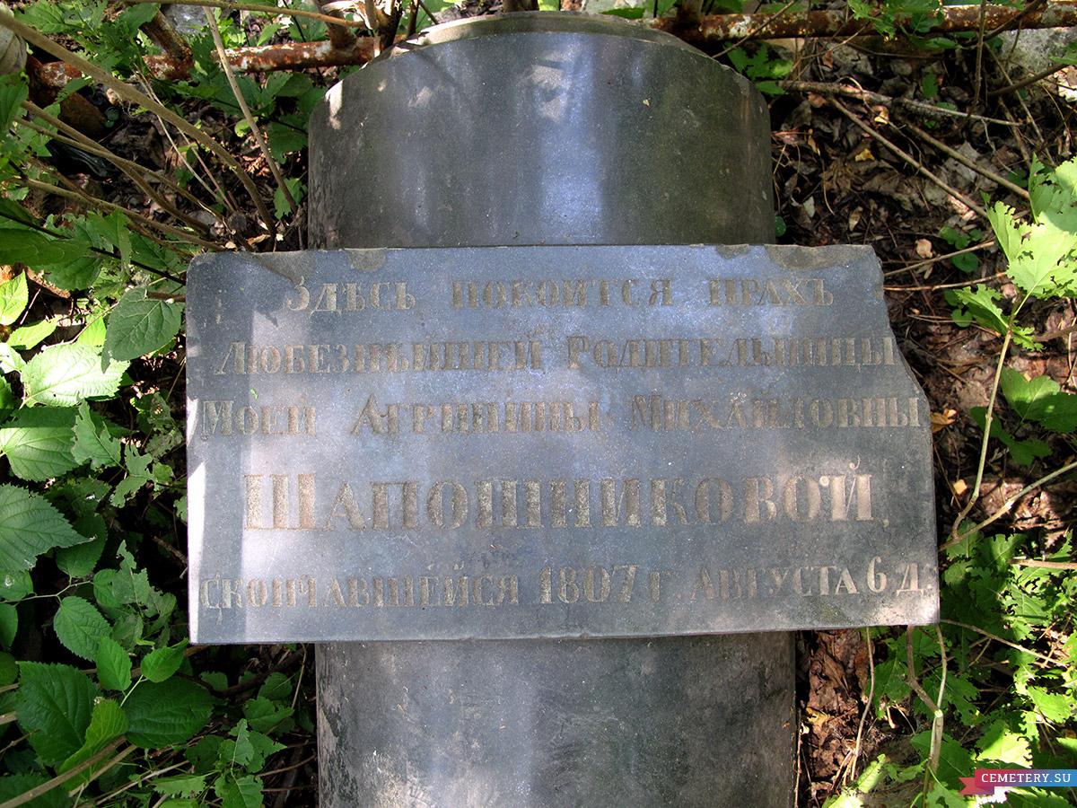 Старое кладбище Таганрога. Шапошниковы